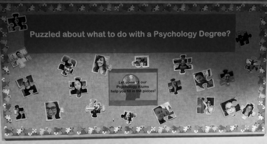 alumni photos and career titles on bulletin board